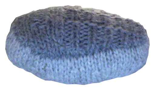 A knitted trilobite